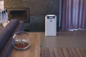 Purificatoarele SHARP cu Plasmacluster ionizează aerul direct în încăpere, nu în aparat