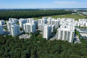 """""""Impact este permanent în căutare de noi oportunităţi pe piaţa imobiliară"""""""